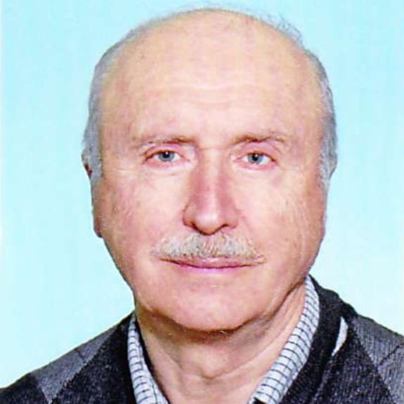 Ing. Josef Kopa